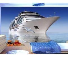 Туристический бизнес (Круизные туры)