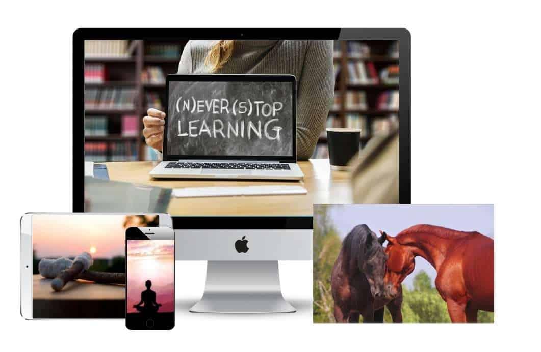 Multimedia Platforms to learn with Helen DaVita