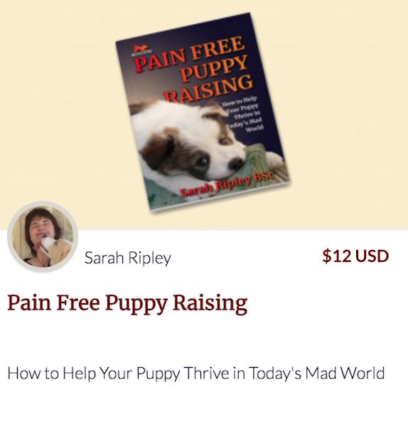 Pain Free Puppy Raising ebook link