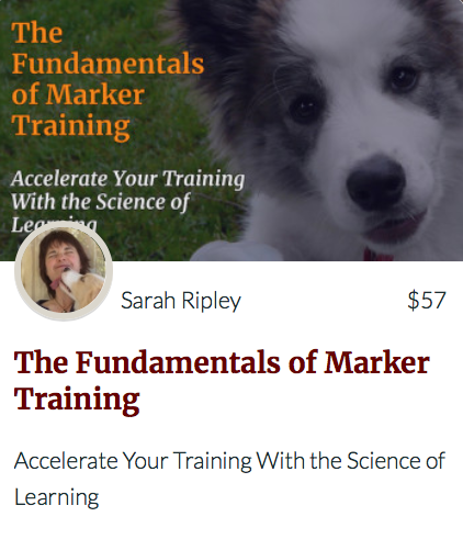 The Nuts & Bolts of Teaching Dogs Course link