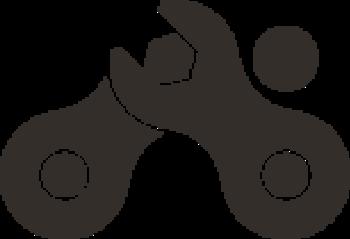Presto-Sport logo