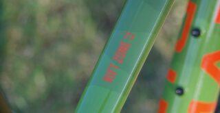 Marin Rift Zone 17.5 1 frame detail.