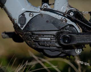 Detail image of Shimano STEPs battery on Alpine Trail E mountain bike
