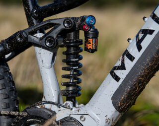 Detail shot of Alpine Trail E2 rear shock