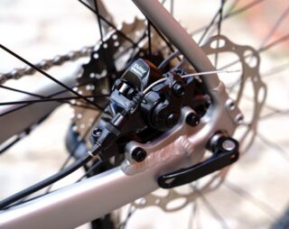 Lombard dropout and rear flat mount brake mount