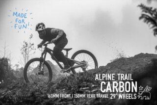 Marin Alpine Trail Carbon Image Overlay 2