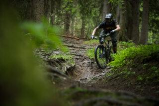 John Oldale riding mountain bike in rooty gully