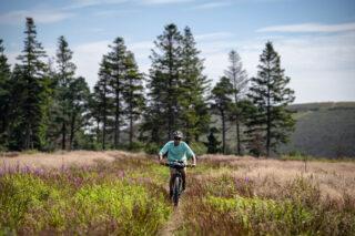Marin Bikes Tidy Trails Bike Packing Ride