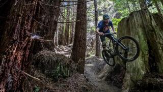 Marin rider Evan Mercure blasting through the redwoods on a Marin Rift Zone 27.5 3.