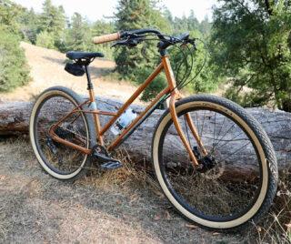 Marin Larkspur 2 bike leaning against a log.