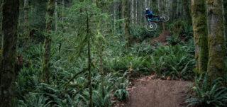 Marin rider Mark Matthews riding deep in the British Colombia woods.
