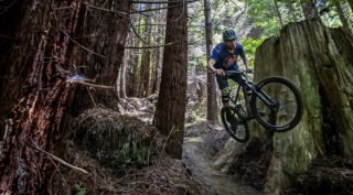 Marin rider Evan Mercure jumping past a redwood stump, on his Rift Zone 27.5 3.