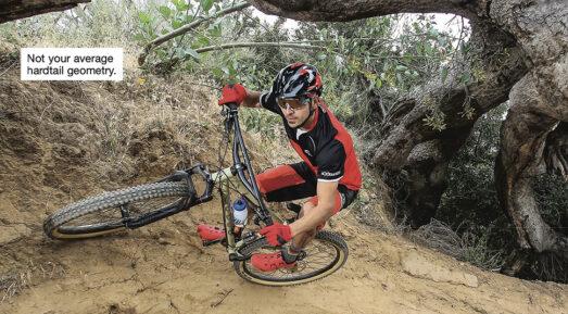 Marin Larkspur 2 bike leaning up against a log.