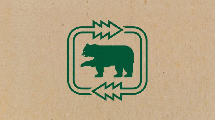 Green bear bg texture