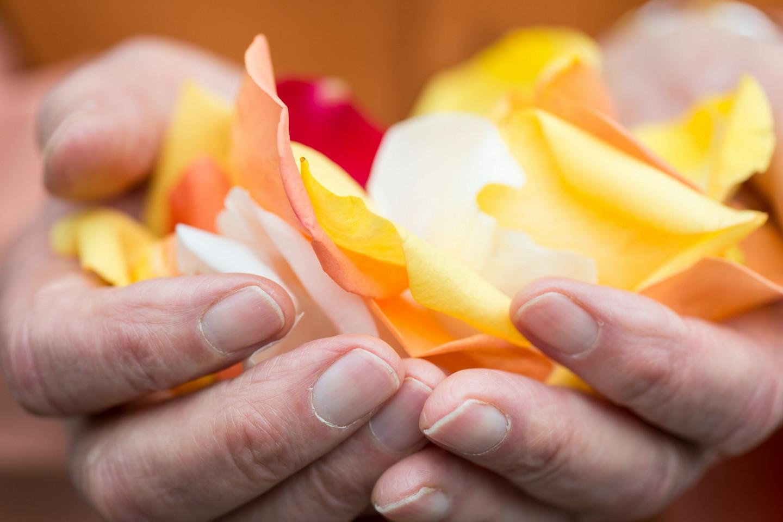 Blog Header Hands Petals