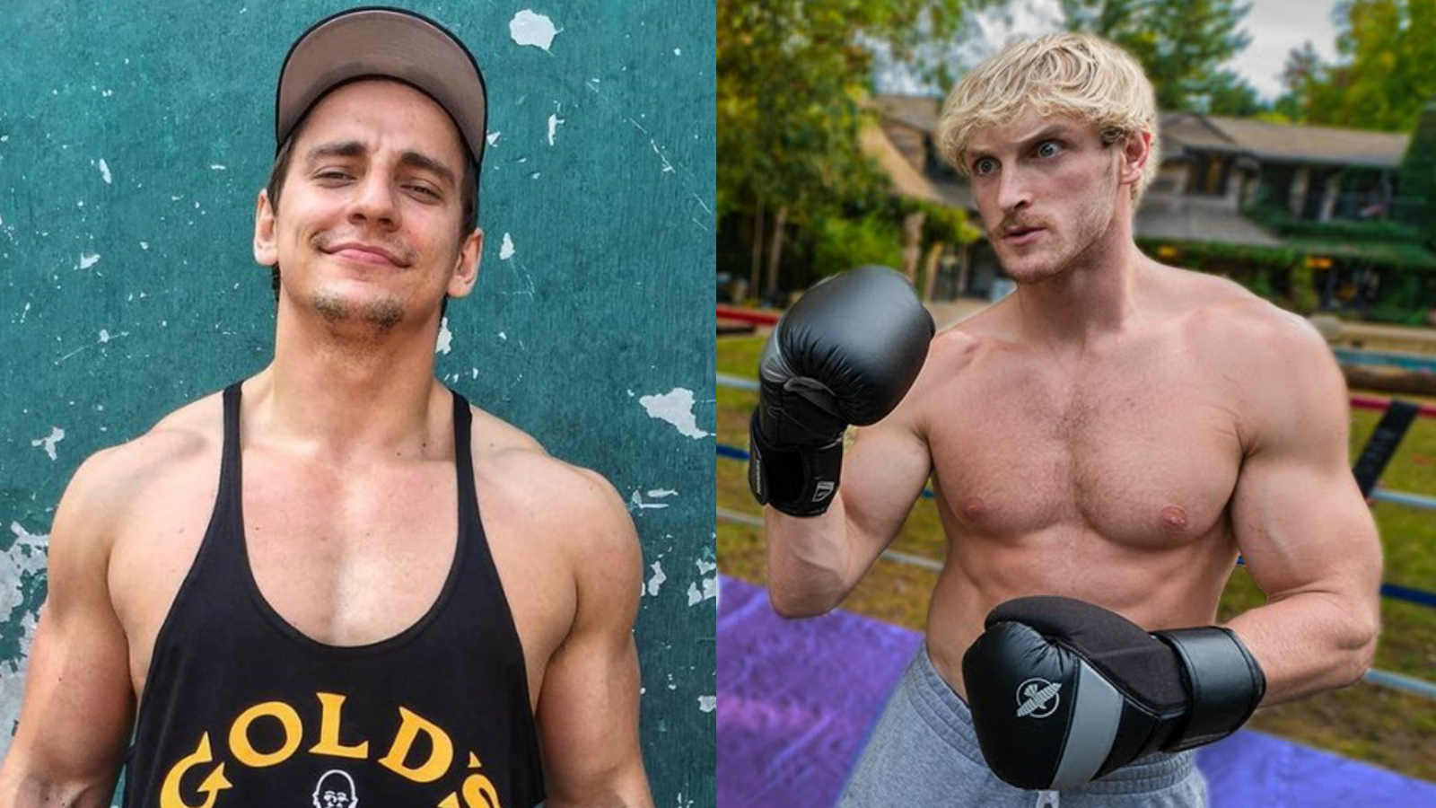 Twitter: Vitaly / YouTube: Logan Paul