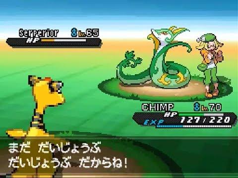 The Pokemon Company / Game Freak