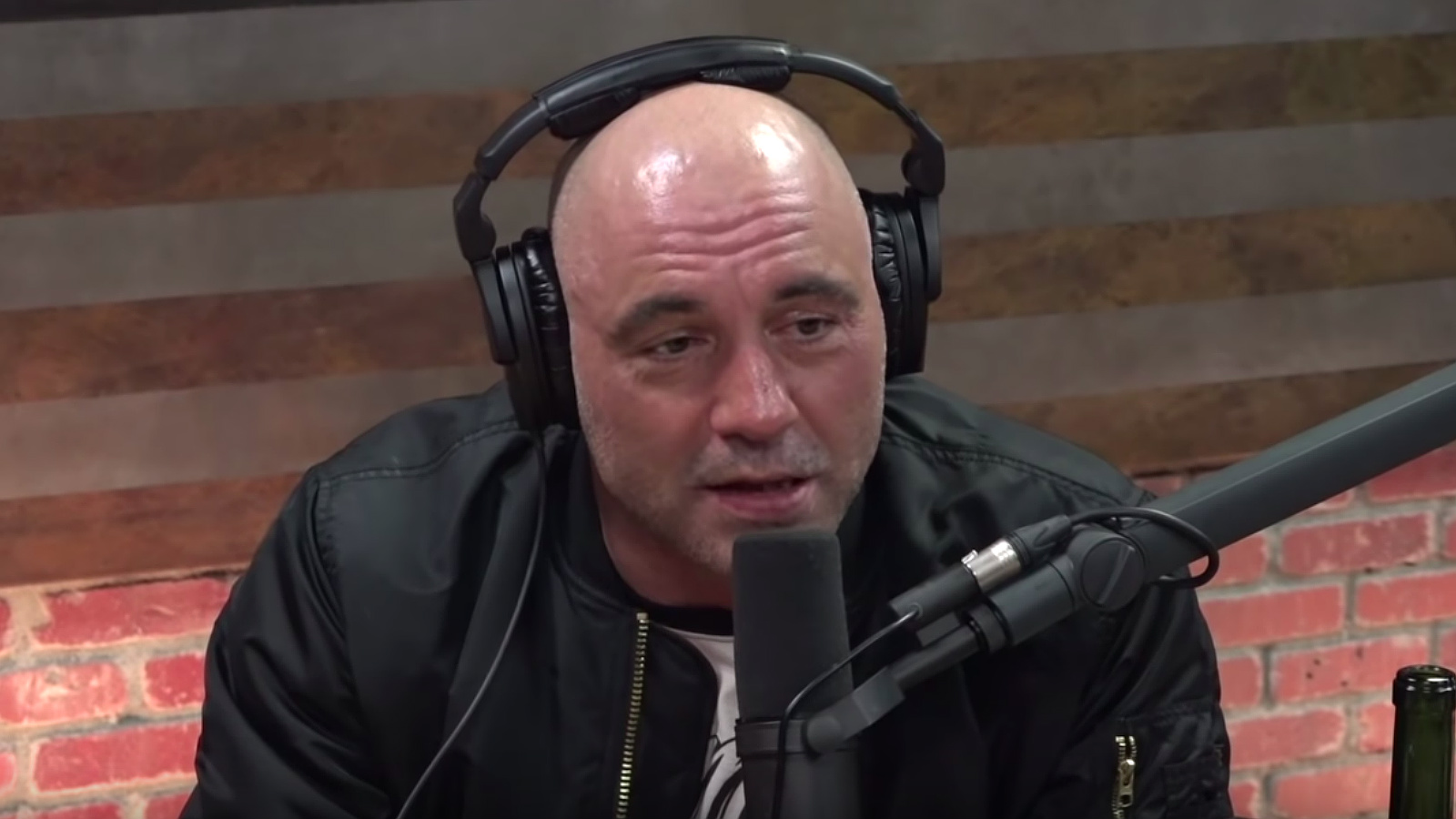 Joe Rogan explains why he loves Texas, Texas tiger population