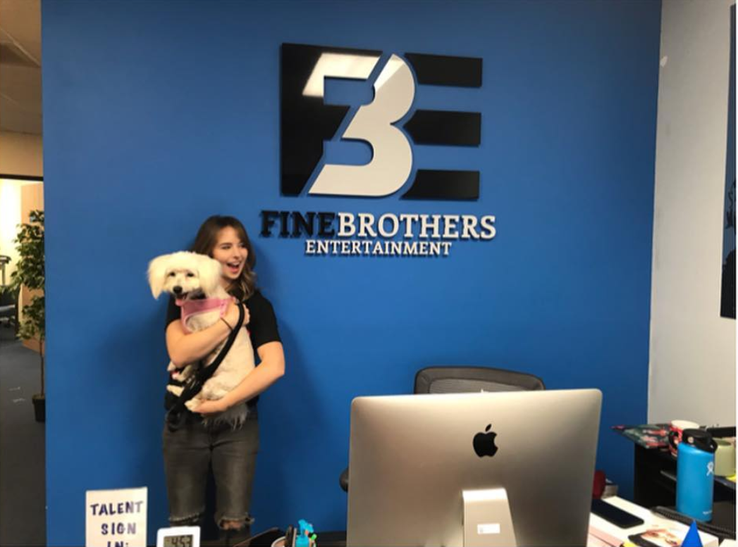 Chelsea Cook working with Fine Brothers on Adults React