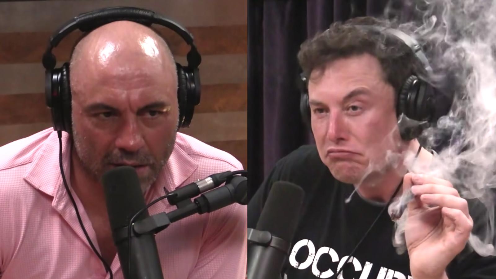 Elon Musk on the Joe Rogan Podcast