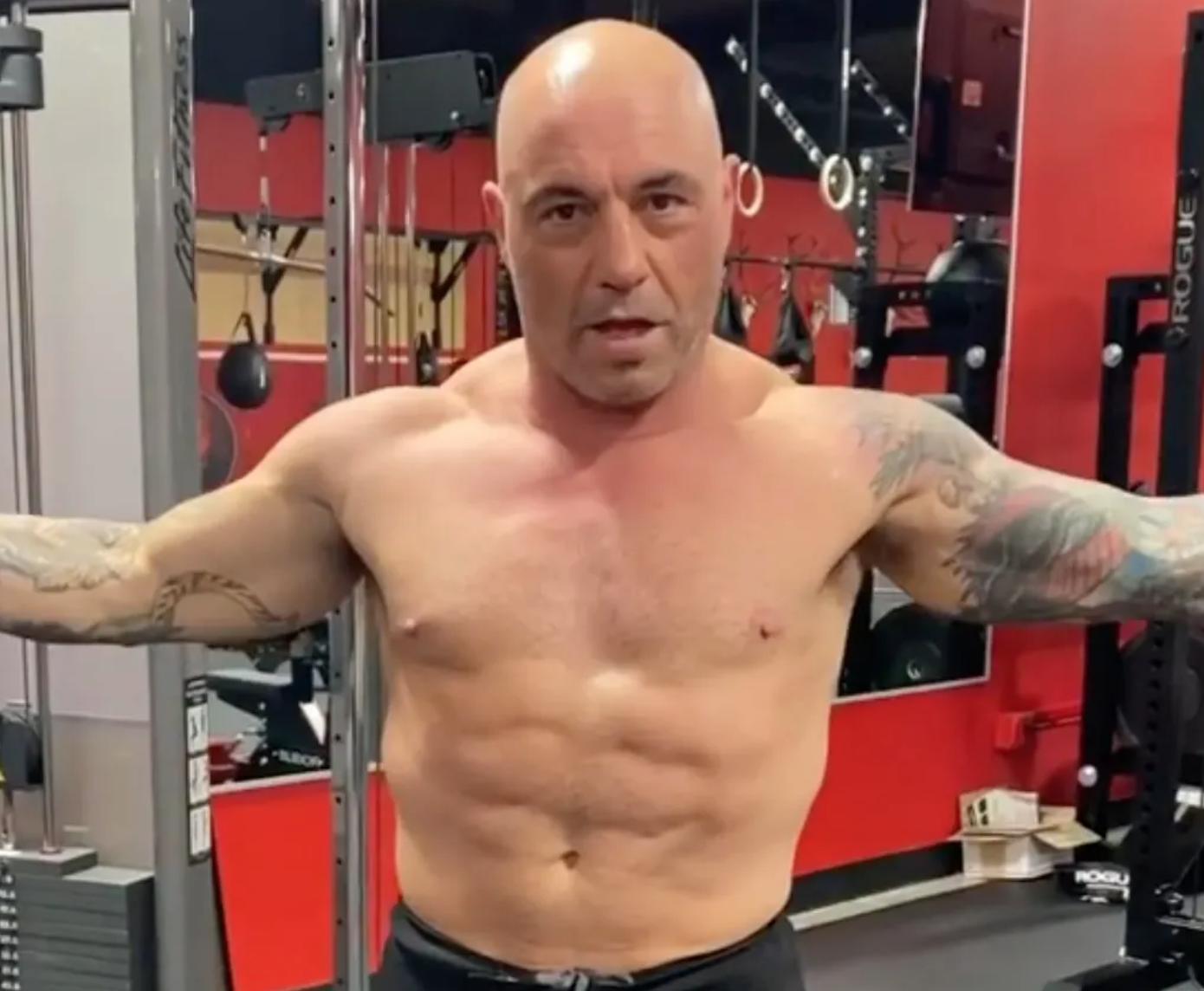 Joe Rogan's physique after carnivore diet.