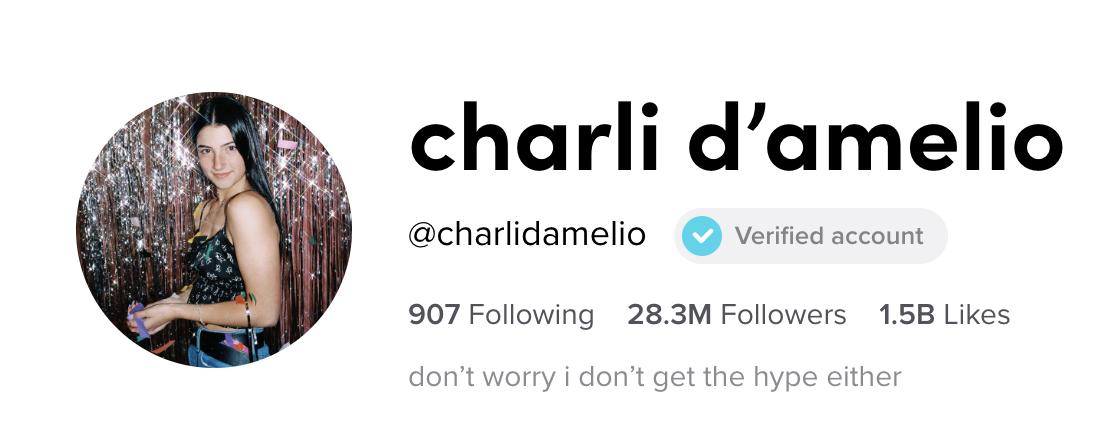 Charli D'Amelio's TikTok profile and bio
