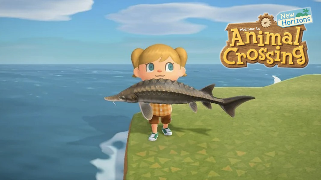 Animal Crossing New Horizons All Fish Spawns Locations Shadows More Dexerto The main point is to make friends with the animals in the game. animal crossing new horizons all fish