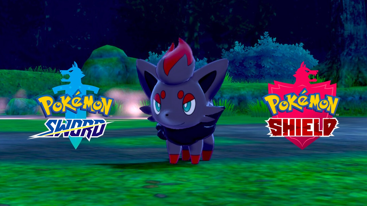 Zorua in Pokemon Sword and Shield