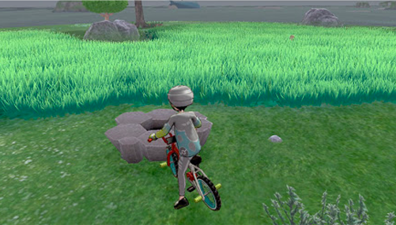 Pokemon Dens