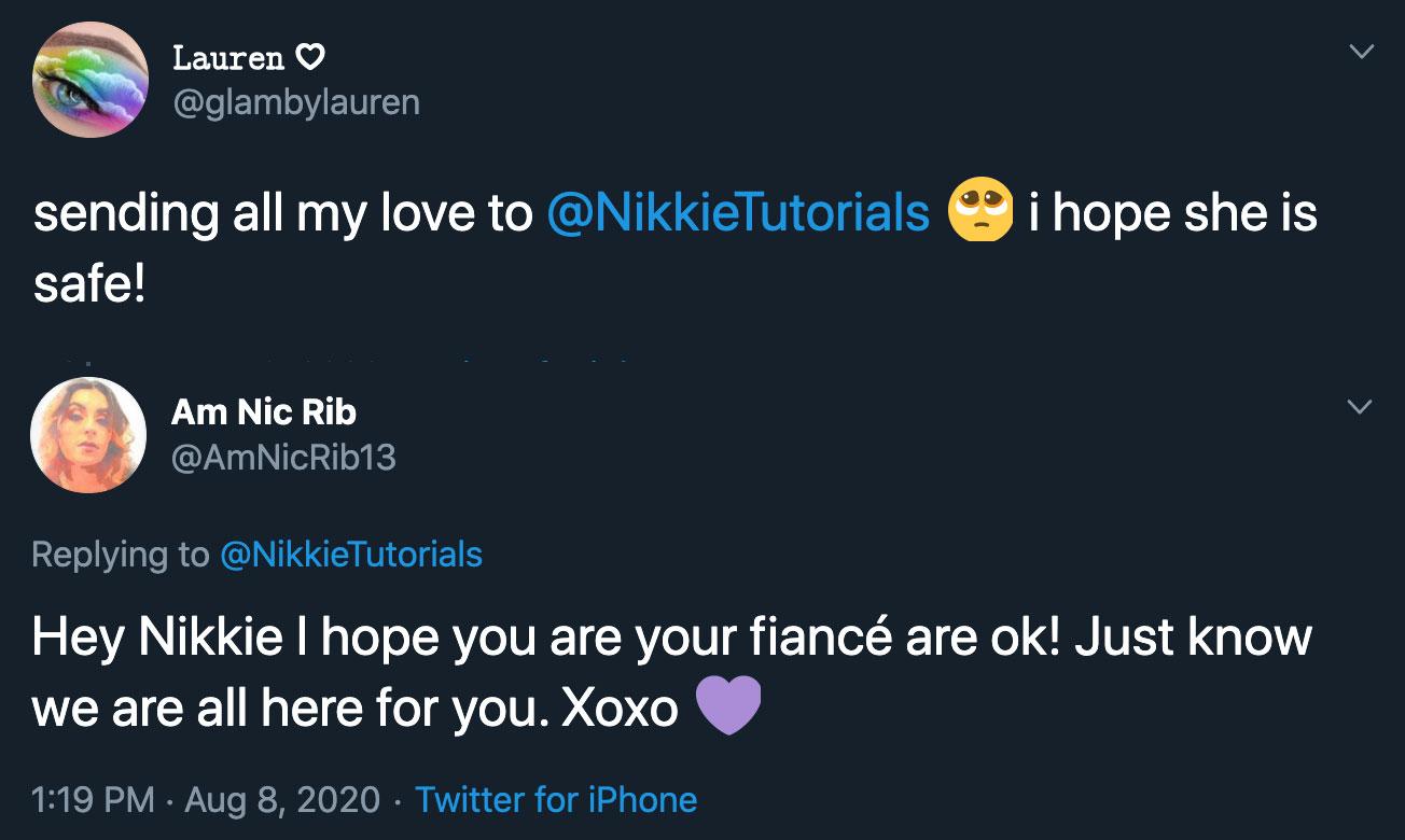 fans concerned for nikkietutorials