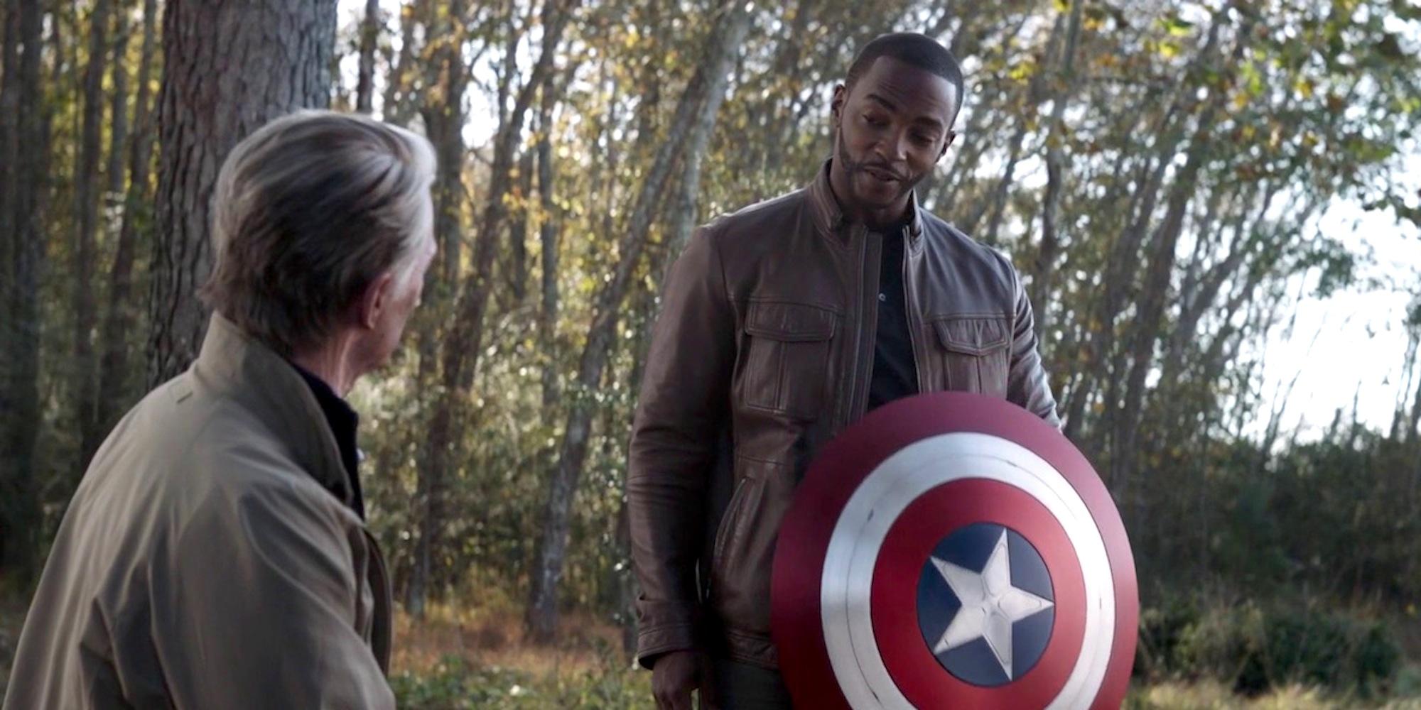 Steve Rogers made Sam Wilson the new Captain America in Avengers: Endgame.