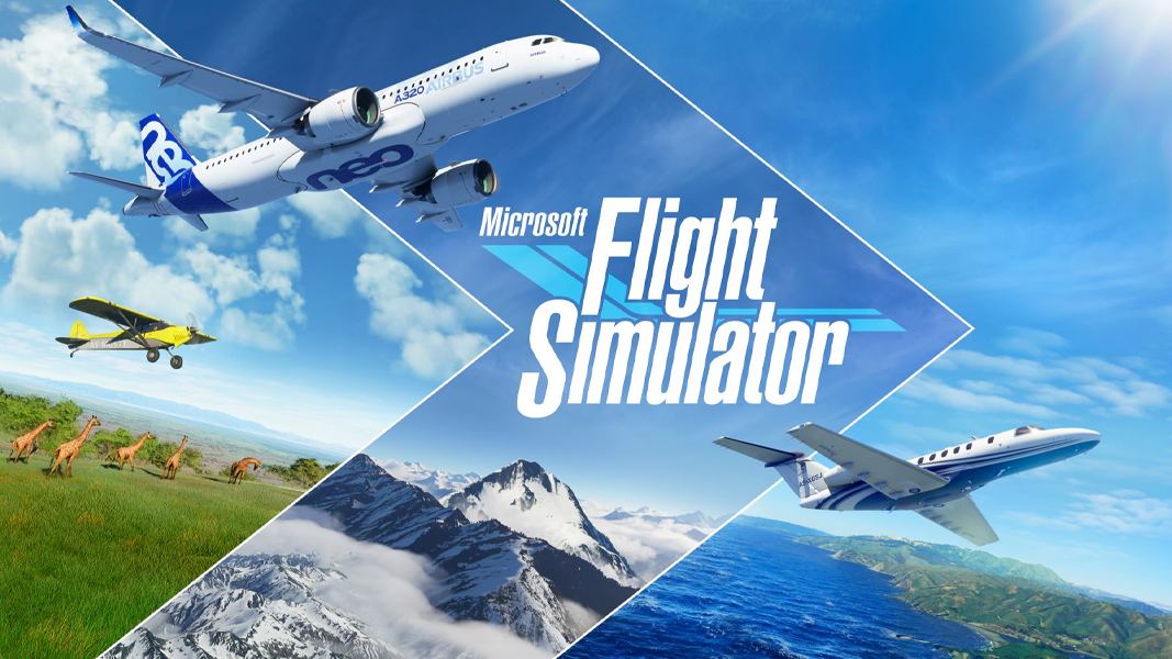 Flight Simulator poster