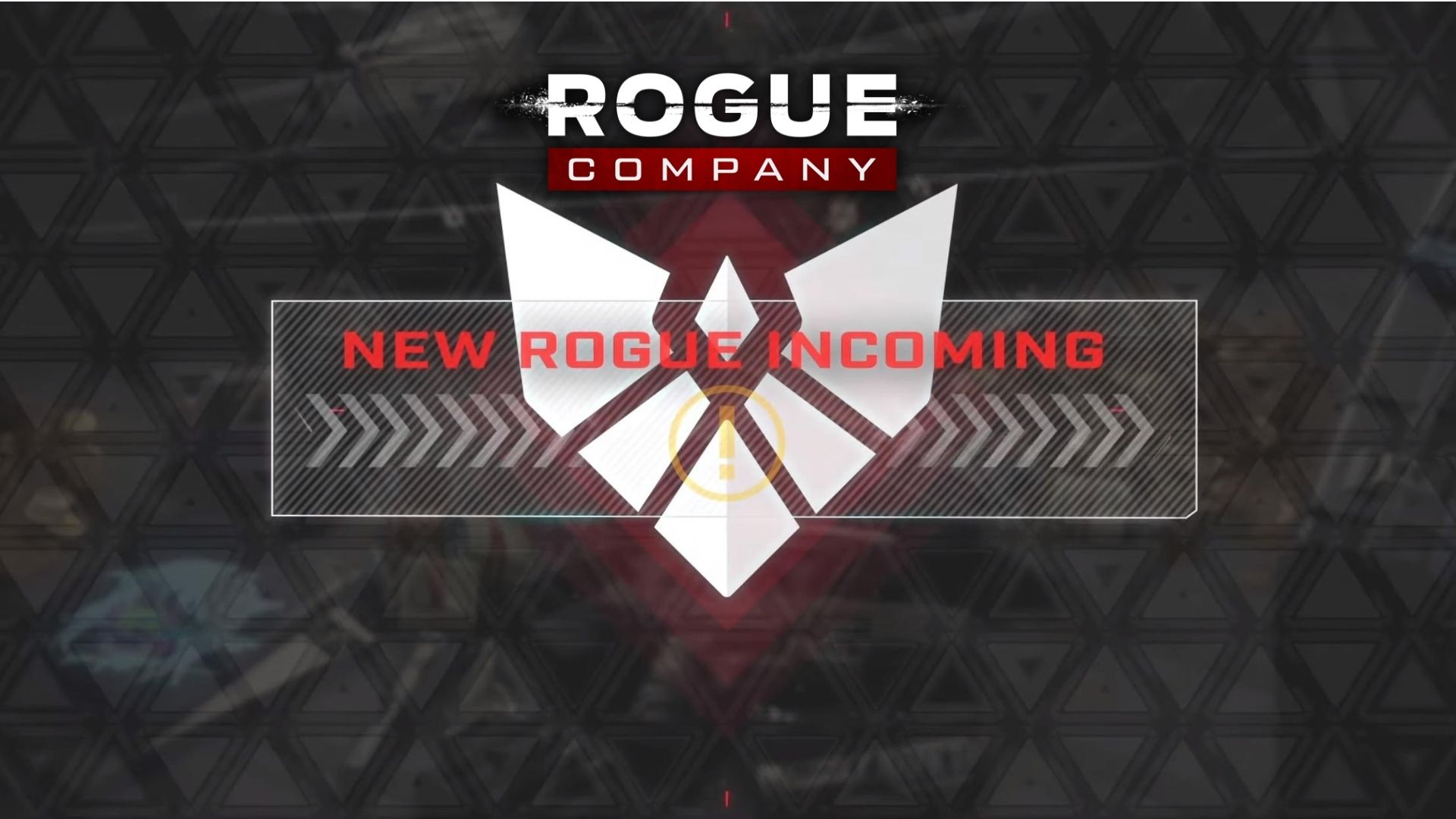 Rogue Company features