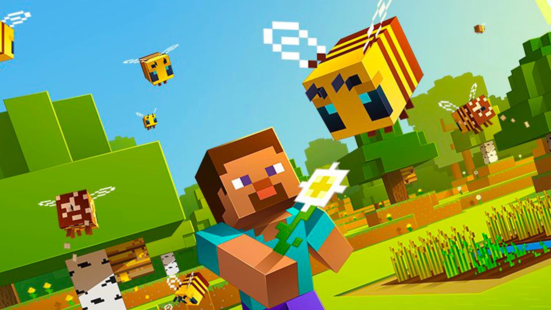 Minecraft player