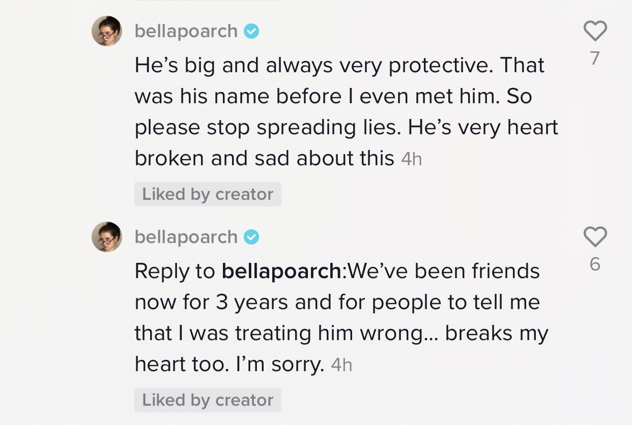Bella Poarch explains the accusations against her in a TikTok comment.