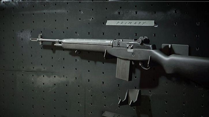 Warzone DMR 14