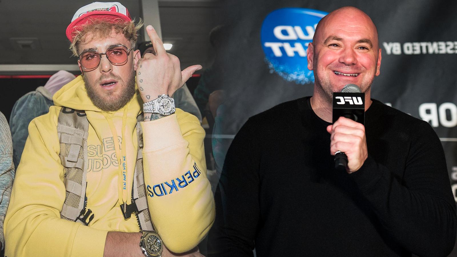 Jake Paul Dana White UFC