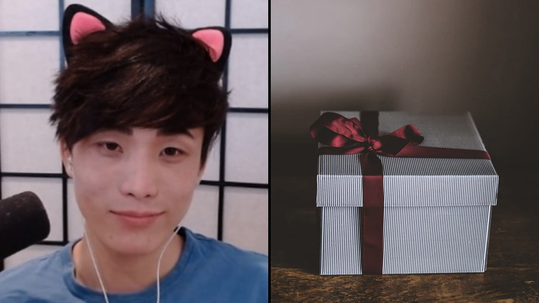 Sykunno with cat ears on next to a wrapped gift