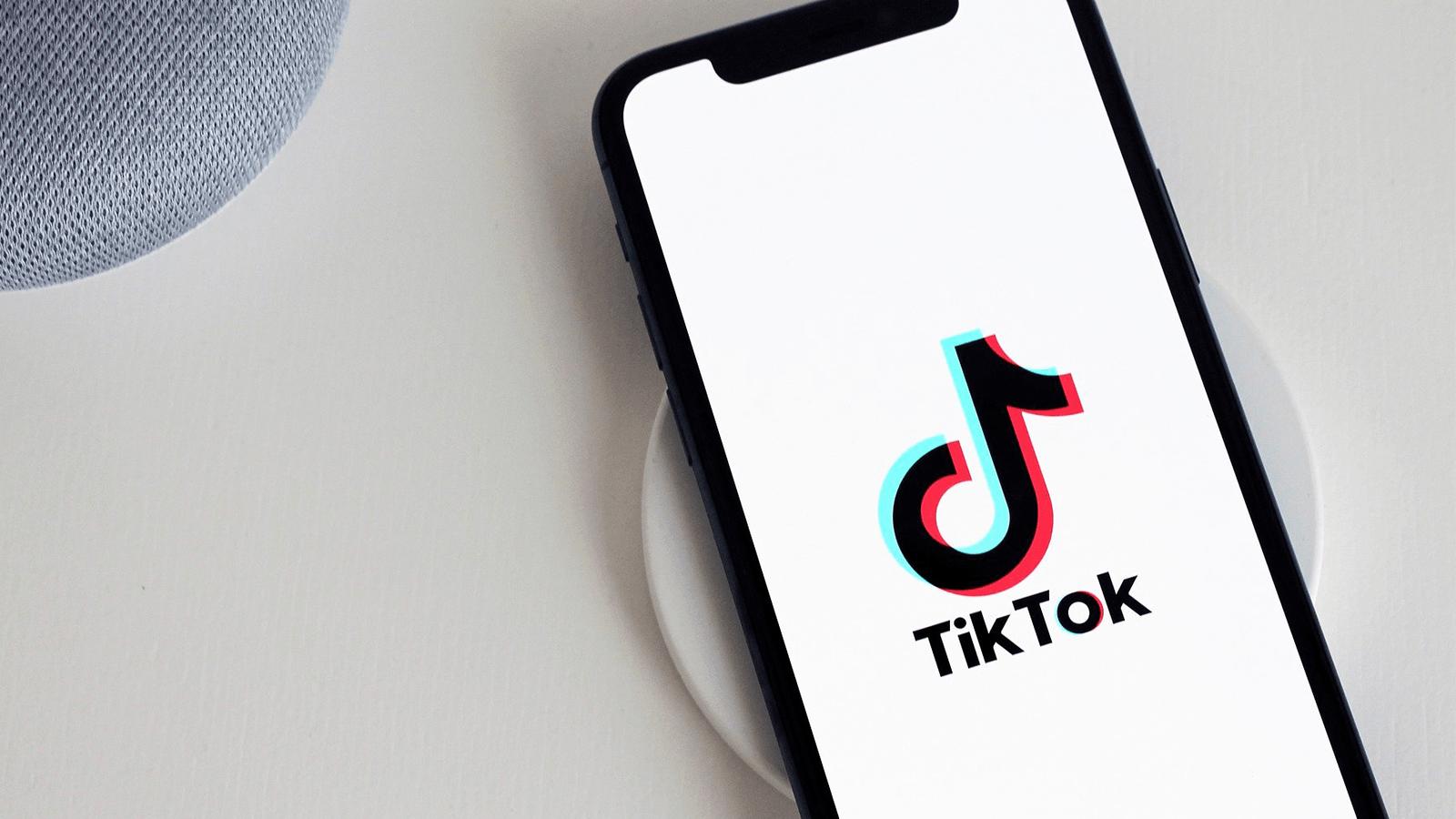 TikTok bug