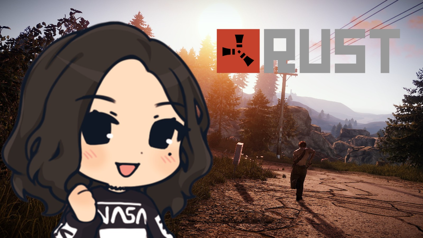 Huge Rust Twitch donation