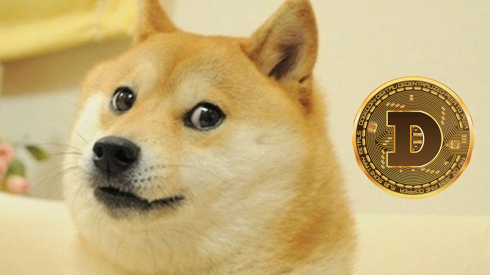 Doge meme with the Dogecoin