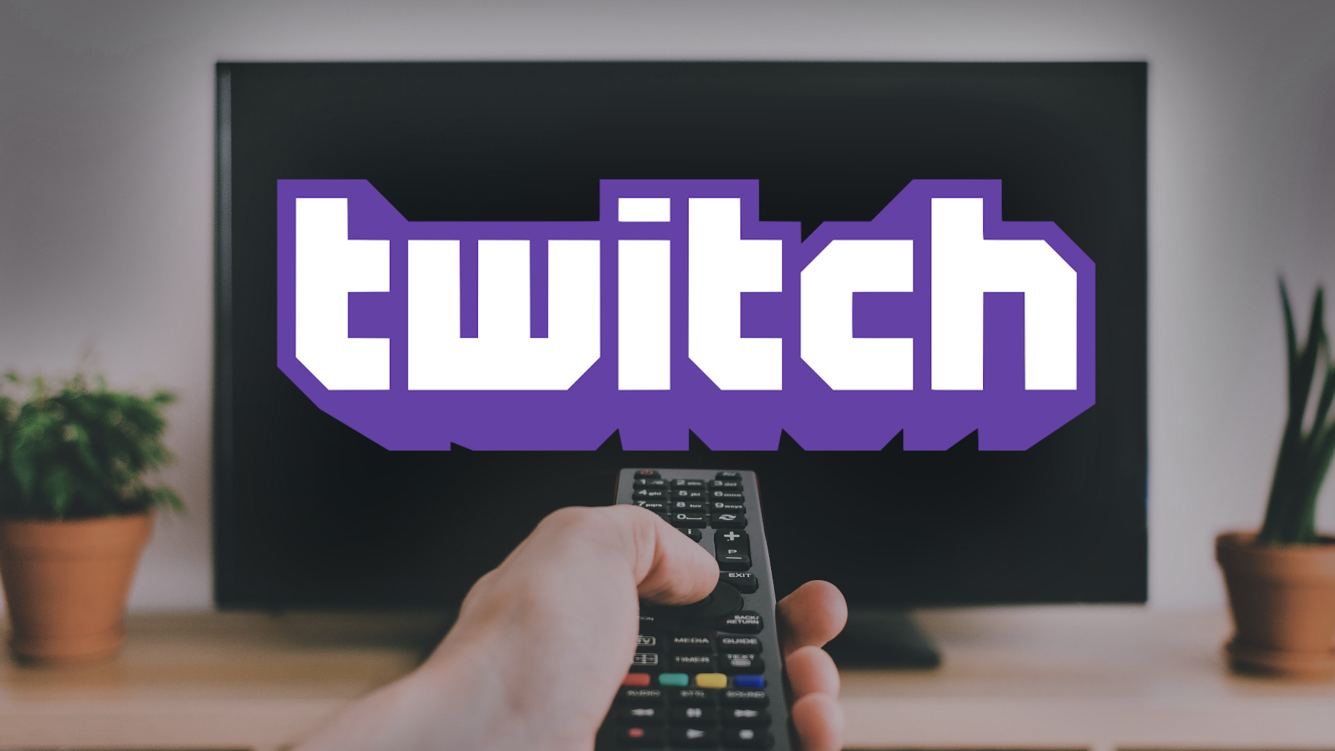 twitch streaming statistics