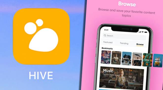 Hive app social