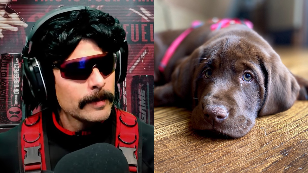 Dr Disrespect puppy
