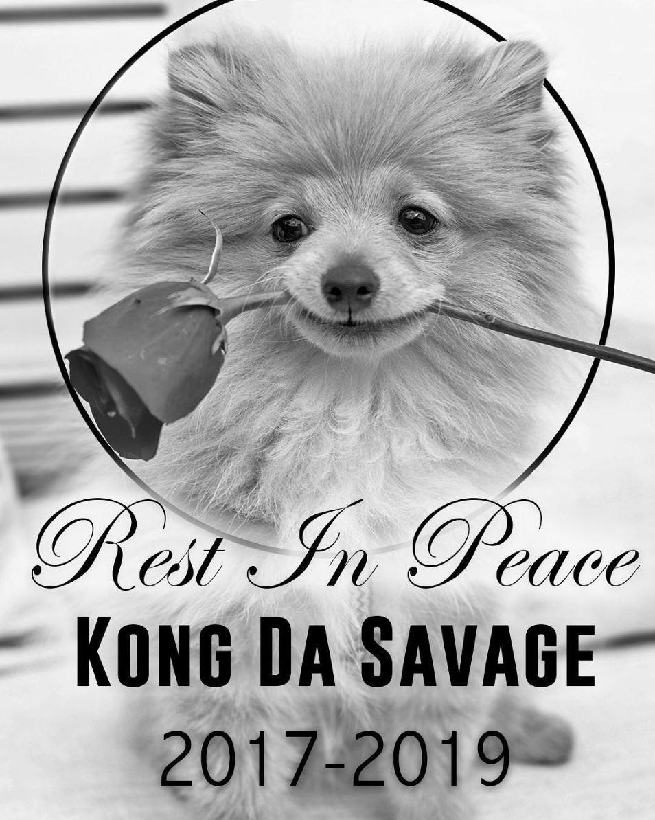 Kong Da Savage, Instagram