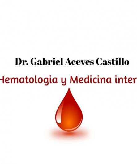 Gabriel Aceves Castillo