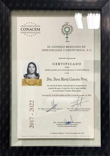 Doris Cancino Perez - Galería de imágenes