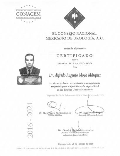 Alfredo Augusto Moya Márquez  - Multimedia