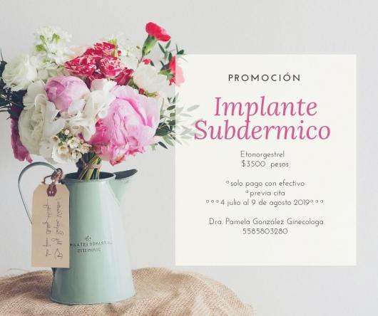 Lesli Pamela González Domínguez  - Multimedia