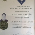 Dr. Erick Mendoza Carrillo